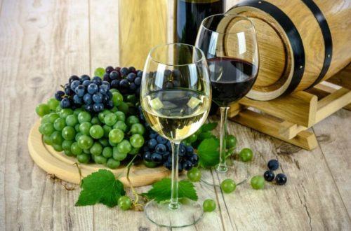 I Migliori Vini e Prodotti tipici di tutta la Calabria