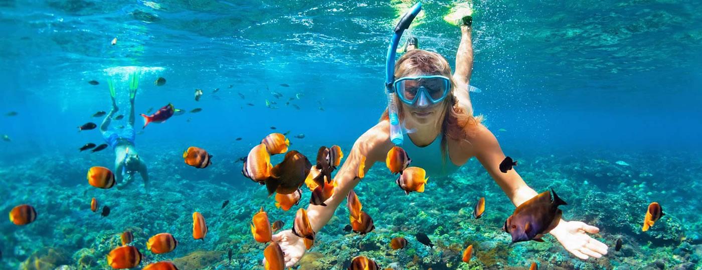 Vieni a goderti il mare di Tropea