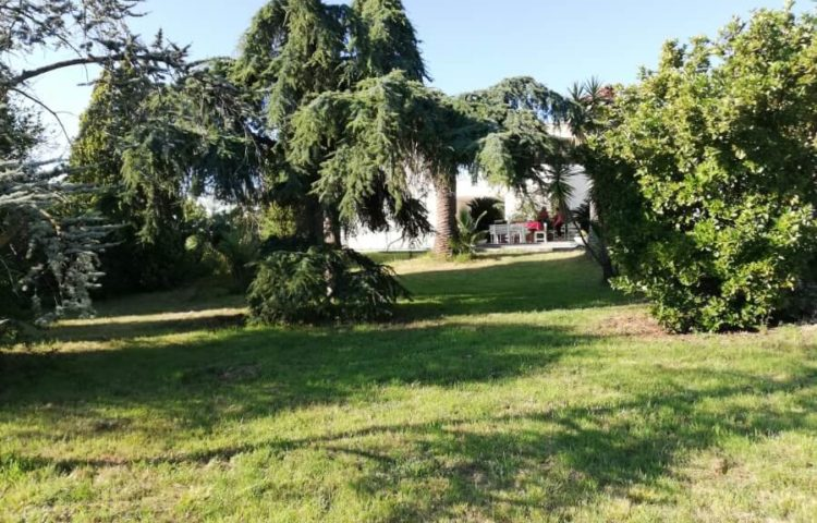 Villa Eleonora Attico 04